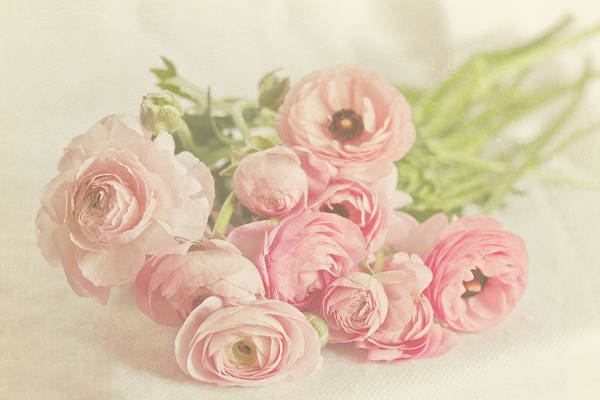Pink Art Print featuring the photograph The Bouquet by Angela Stansell