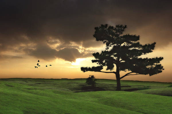 Landscape Art Print featuring the photograph The Day Is Done by Tom York Images