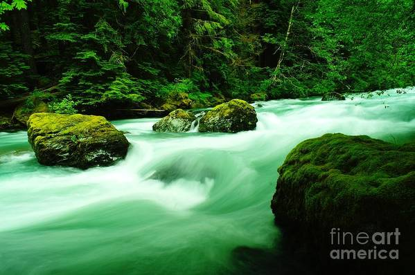 Rivers Art Print featuring the photograph The Dosewallups River by Jeff Swan
