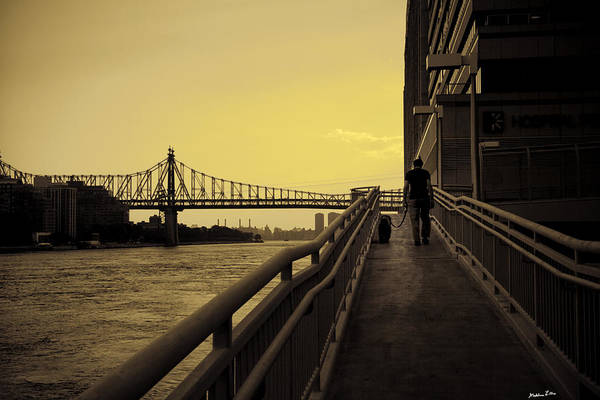 Queensboro Art Print featuring the photograph The Long Walk by Madeline Ellis