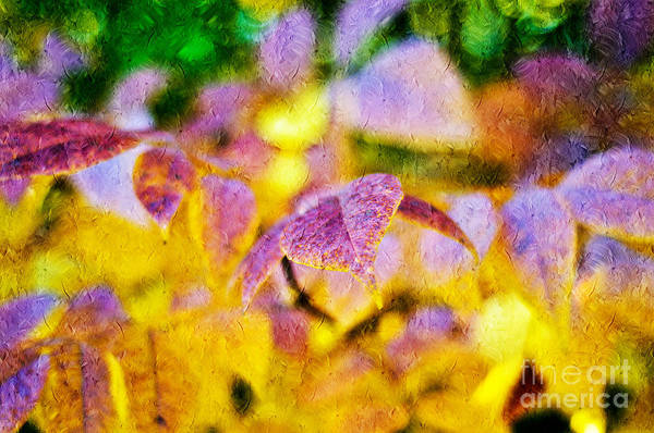 Abstract Art Print featuring the photograph The Warmth Of Autumn Glow Abstract by Andee Design