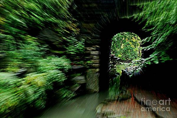 Movement Art Print featuring the photograph Through Time by Maria Scarfone