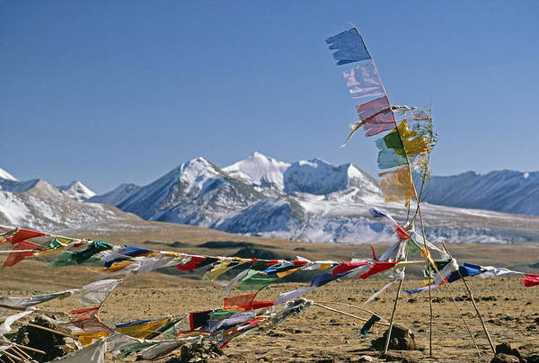 Himalaya Art Print featuring the photograph Tibetan Buddhist Prayer Flags Atop Pass by Gordon Wiltsie