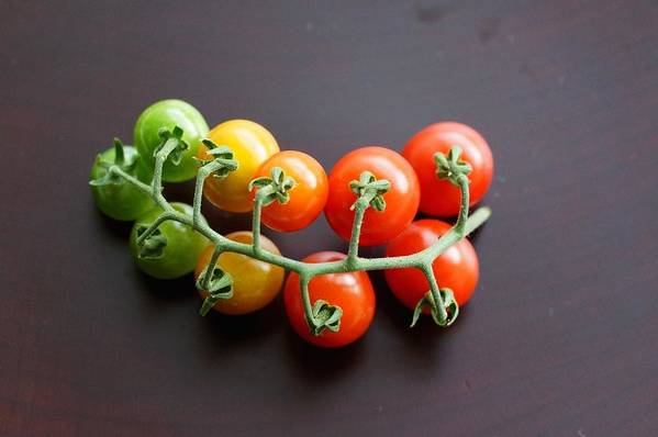 Horizontal Art Print featuring the photograph Tomato by Lilybunrin