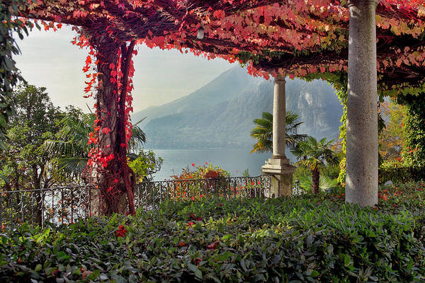 Pergola Art Print featuring the photograph Villa Cipressi Pergola On Lake Como I by Greg Matchick