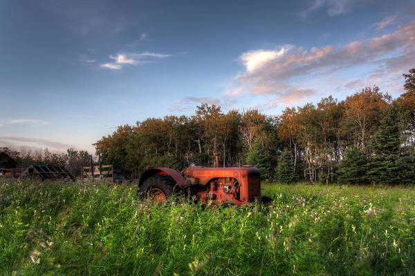 Tractor Art Print featuring the photograph Vintage Tractor by Matt Dobson