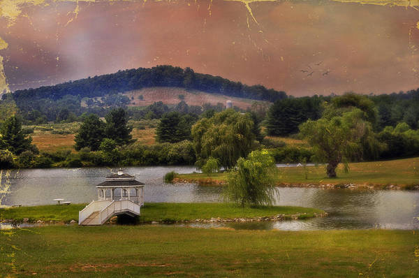 Willow Lake Art Print featuring the photograph Willow Lake Series II by Kathy Jennings