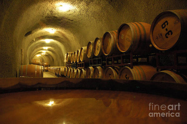 Wine Art Print featuring the photograph Wine Cellar by Micah May