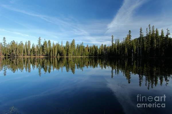 Summit Lake Art Print featuring the photograph Wings In The Lake by Adam Jewell
