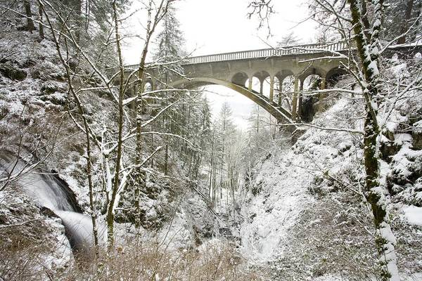Architectural Exterior Art Print featuring the photograph Winter, Shepperds Dell, Columbia River by Craig Tuttle