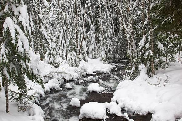 Flow Art Print featuring the photograph Winter Snow Along Still Creek In Mt by Craig Tuttle
