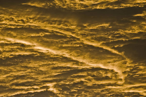 Sunrise Art Print featuring the photograph Yellow Clouds by Patrick M Lynch