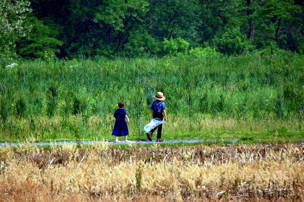 Amish Art Print featuring the photograph Amish Brother And Sister by Randy Matthews