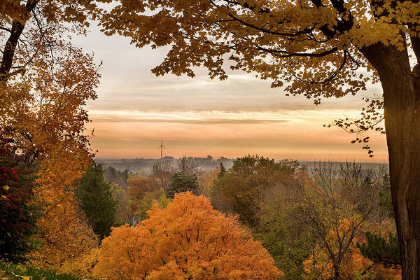 Carleton College* Northfield Art Print featuring the photograph Autumn On The Hill by Joe Miller