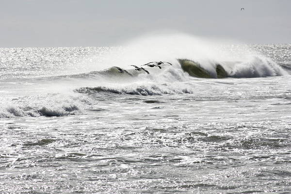 Waves Art Print featuring the photograph Dawn Patrol by Bev Veals