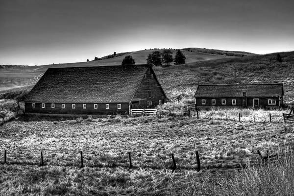 Landscape Art Print featuring the photograph Johnson Road Barns by David Patterson