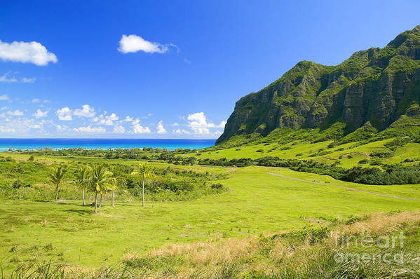 Blue Art Print featuring the photograph Kualoa Ranch Mountains by Dana Edmunds - Printscapes