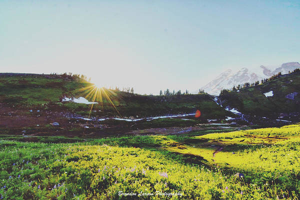 Art Print featuring the photograph Mount Rainier National Park by Brandon Larson