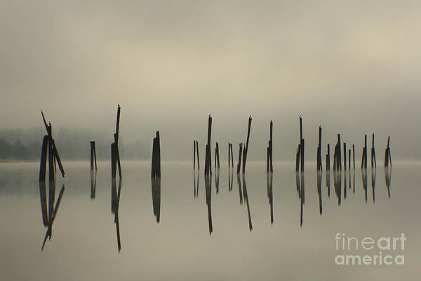 Tranquility Art Print featuring the photograph Pend Oreille Reflections by Idaho Scenic Images Linda Lantzy