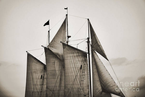Tall Ship Art Print featuring the photograph Schooner Pride Tall Ship Charleston Sc by Dustin K Ryan