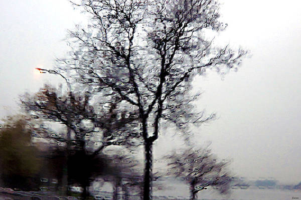 Trees Art Print featuring the photograph West Side Highway by JoAnn Lense