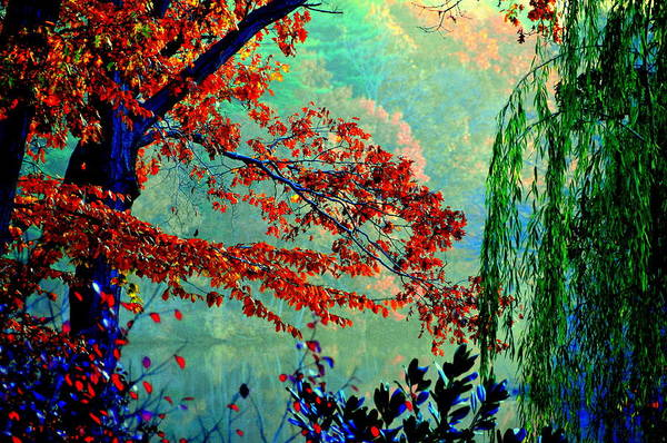 Lake View Art Print featuring the digital art Autumn Colors by Aron Chervin