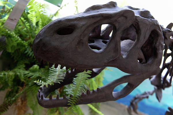 Centro De Investigaciones Paleontologicas Art Print featuring the digital art Centro De Investigaciones Paleontologicas by Carol Ailles