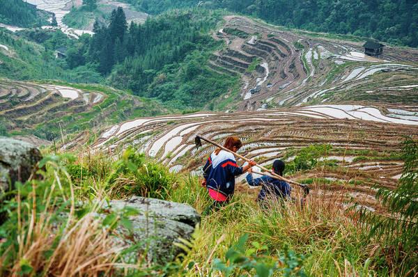 Terrace Art Print featuring the photograph Longji Terraced Fields Scenery by Carl Ning