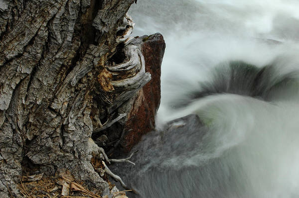 Water Art Print featuring the photograph Around The Bend by Donna Blackhall