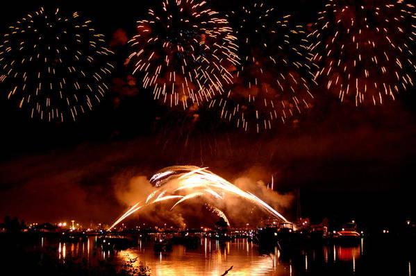 Fireworks Art Print featuring the photograph 2008 Fireworks 4 by Jennifer Englehardt