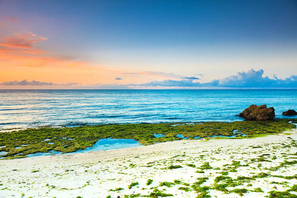 Beach Art Print featuring the photograph Sunrise by MotHaiBaPhoto Prints