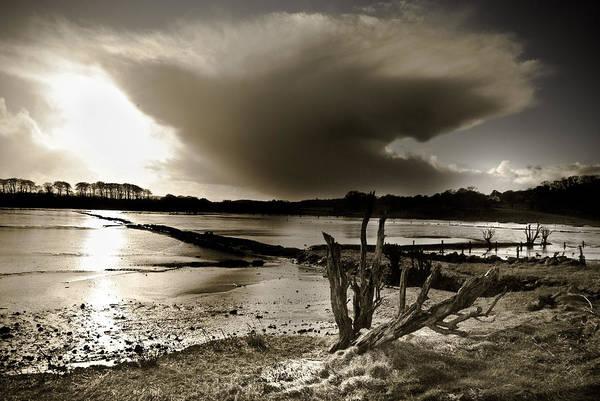 Ireland Art Print featuring the photograph Winter Light by Heston Kelly