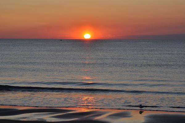 Sunrise Art Print featuring the photograph Sunrise by Jo-Ann Matthews