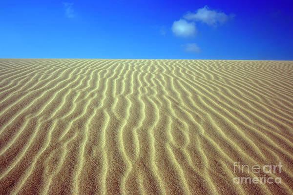 Sand Art Print featuring the photograph Desert by MotHaiBaPhoto Prints