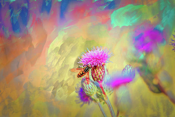 Hoverfly On Abstract Art Print featuring the photograph A Hoverfly On Abstract #h3 by Leif Sohlman
