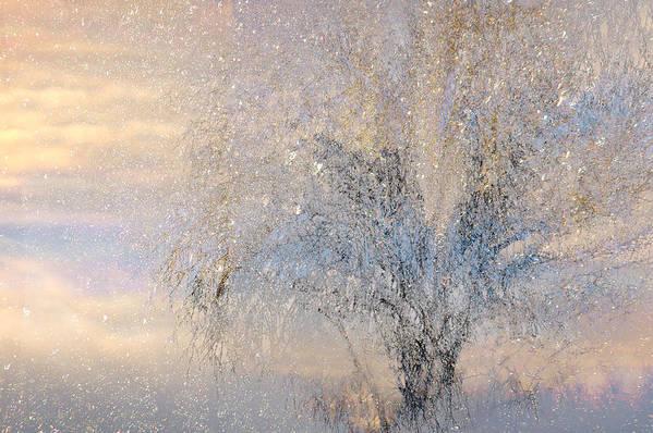 Winter Landscape Fantasy Art Print featuring the digital art A Shimmering Light by Linda Murphy