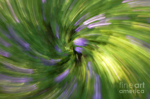 Abstract Art Print featuring the photograph A Swirl Of Color Abstract by DeeDee Yelverton