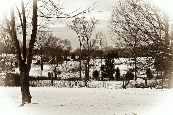 Winter Landscape Art Print featuring the photograph A Winters Day by Laura DAddona