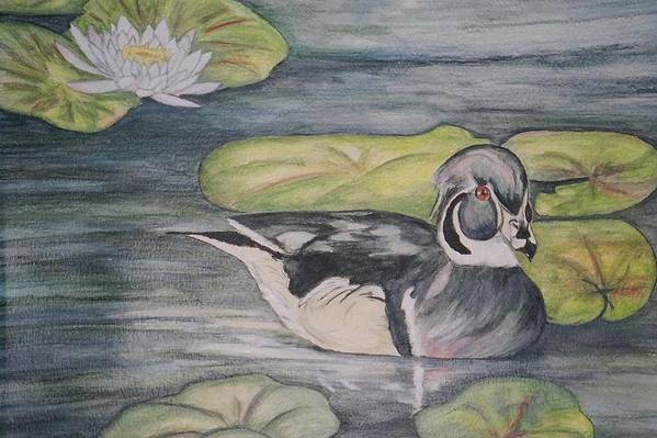 Wood Duck Art Print featuring the painting Among The Lillypads by Debra Sandstrom