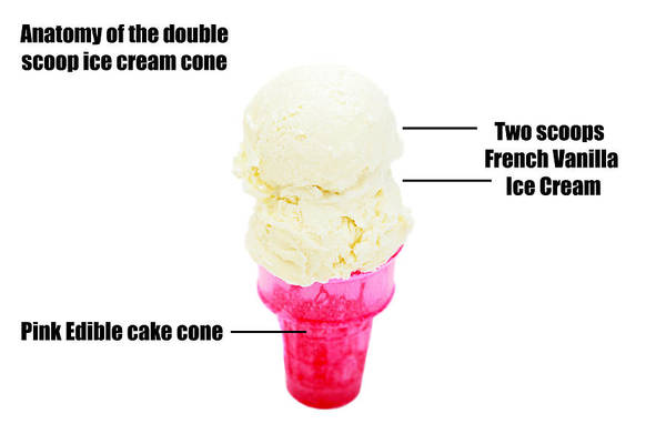 Anatomy Art Print featuring the photograph Anatomy Of A Double Scoop Of Vanilla Ice Cream Cone by Michael Ledray