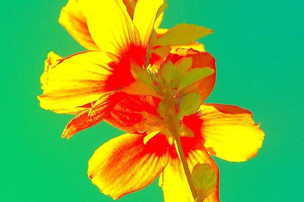 Art Print featuring the painting Andy Warhol Inspired Yellow Flower by Filipa Mendes