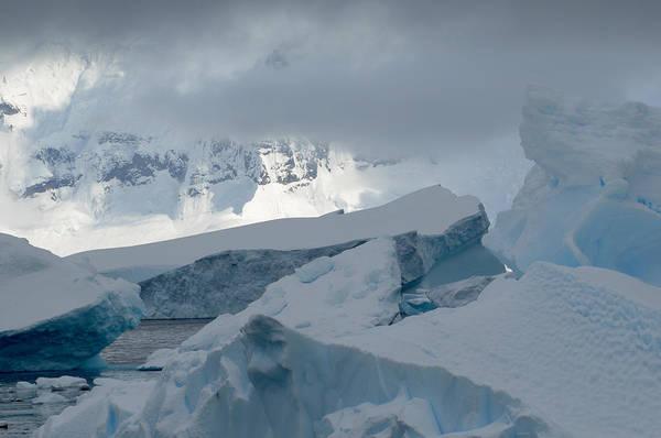 Antarctica Art Print featuring the photograph Antarctica Ice by Terese Loeb Kreuzer