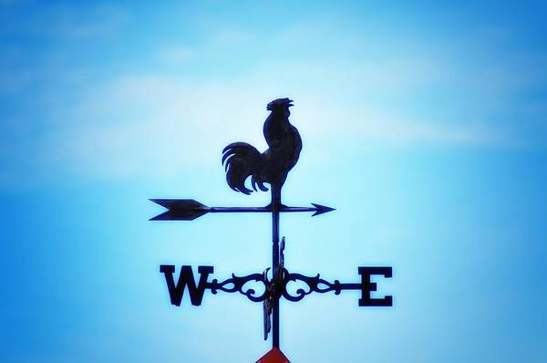 Weather Vane Print featuring the photograph Any Way The Wind Blows Home by Bill Cannon
