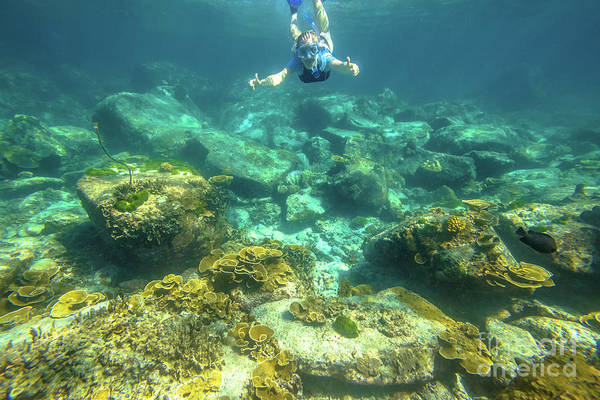 Snorkeling Art Print featuring the photograph Apnea In Tropical Sea by Benny Marty