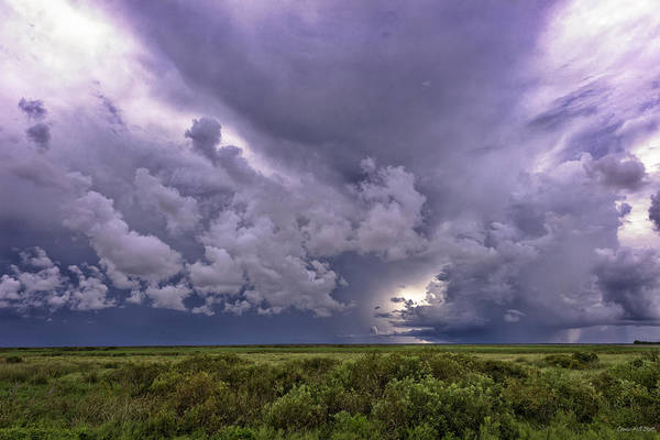 Storm Art Print featuring the photograph Approaching Storm by Louise Hill
