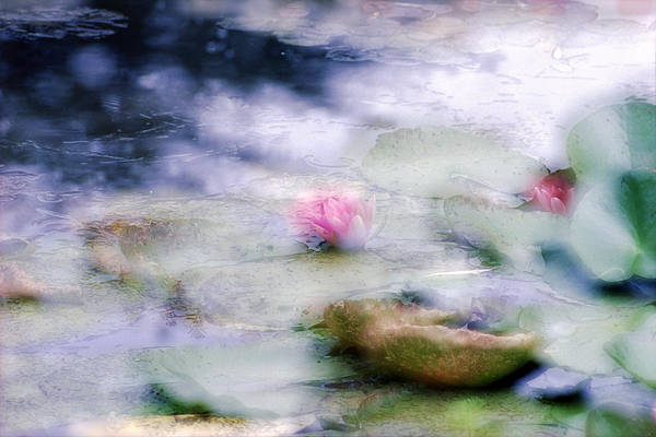 Impressionism Art Print featuring the photograph At Claude Monet's Water Garden 12 by Dubi Roman