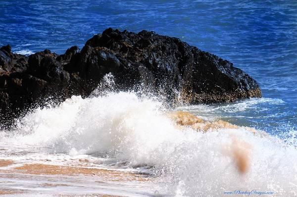 Beach Art Print featuring the photograph Australia Beach 2738 by PhotohogDesigns