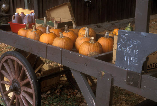 Farm Art Print featuring the photograph Autumn Farmstand by John Burk
