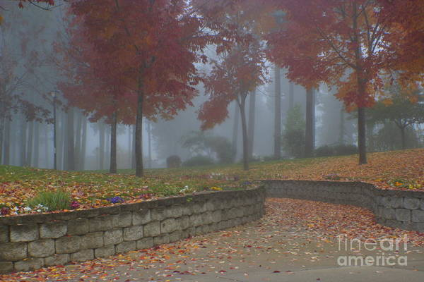 Autumn Art Print featuring the photograph Autumn Fog by Idaho Scenic Images Linda Lantzy
