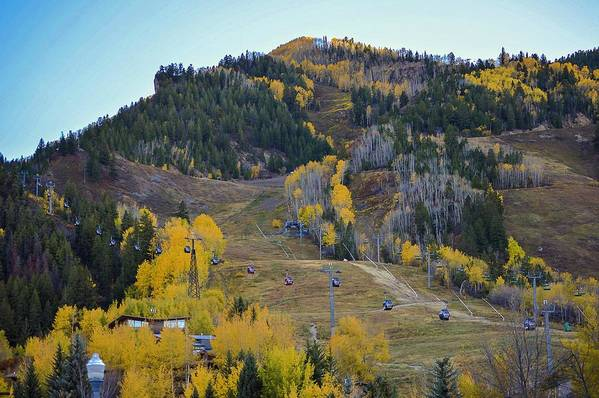 Colorado Art Print featuring the photograph Autumn In Aspen by Livia Pavelescu